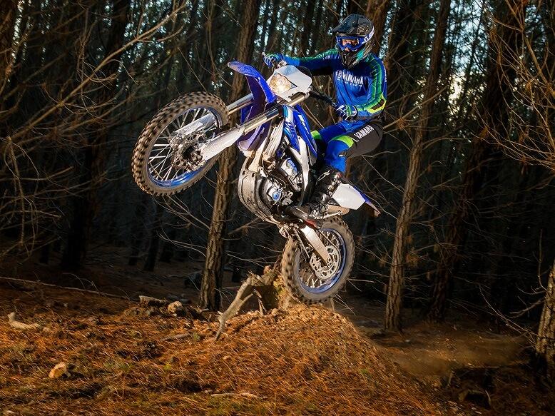 2020_Yamaha WR250F - прыжок в лесу