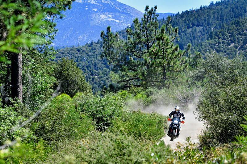 KTM 790 Adventure R- в лесу по бездорожью